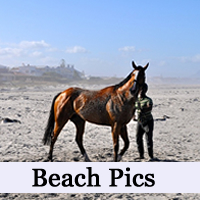 MBR-thumb-beachpics