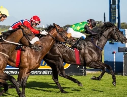 Greyville & Kenilworth – Weekend Race Comments