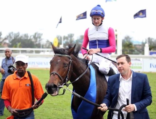Gr1 July winner Marinaresco joins Mike de Kock