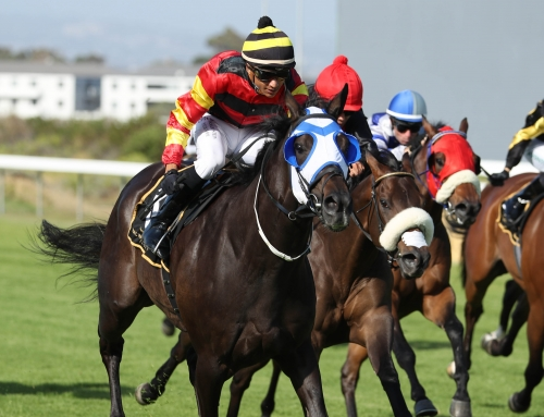 Kenilworth Race Comments, Tuesday 8