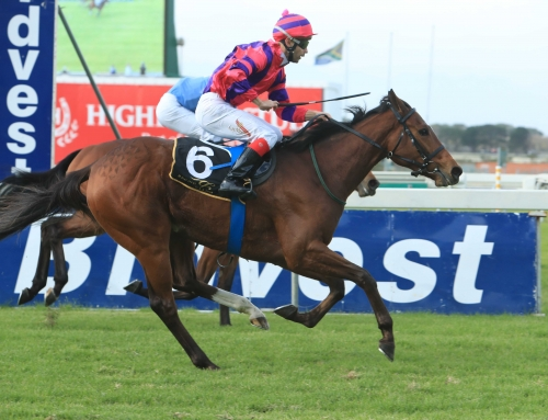 Durbanville & Greyville Weekend Race Comments