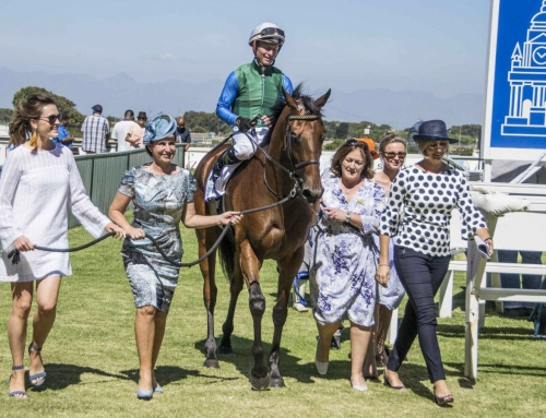 Kenilworth & Greyville Race comments for the weekend