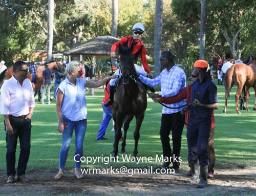 Greyville, Kenilworth & Scottsville Weekend Race Comments