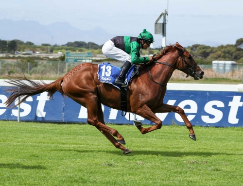 Greyville & Kenilworth Race Comments