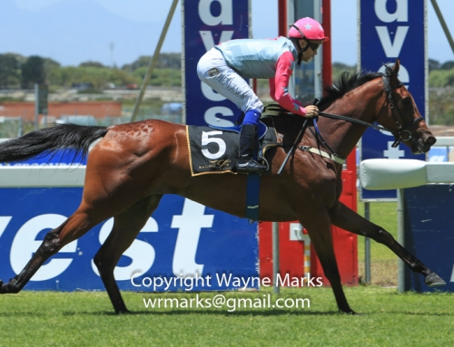 Candice comments on her runners at Durbanville, Sat 24 March