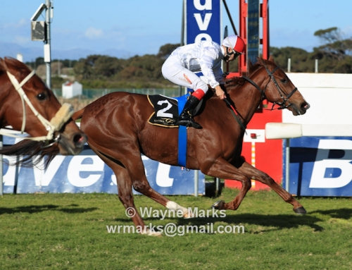 Runner Comments with this weekend at Greyville & Kenilworth