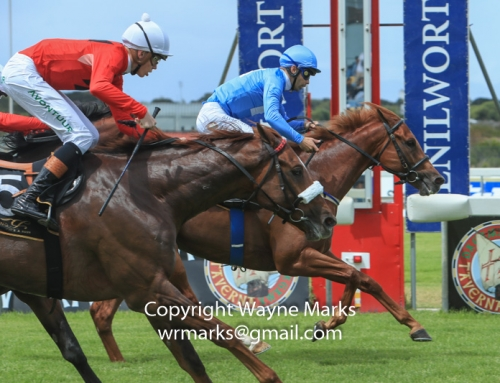 Runner Comments for Kenilworth, 9 May
