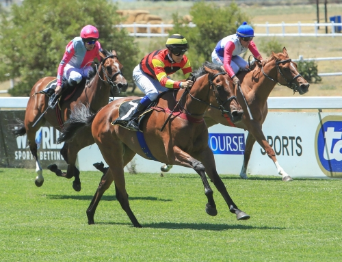 Fairview & Kenilworth Weekend Race Comments