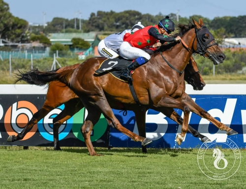DURBANVILLE RUNNER COMMENTS – TUESDAY, 25 FEB