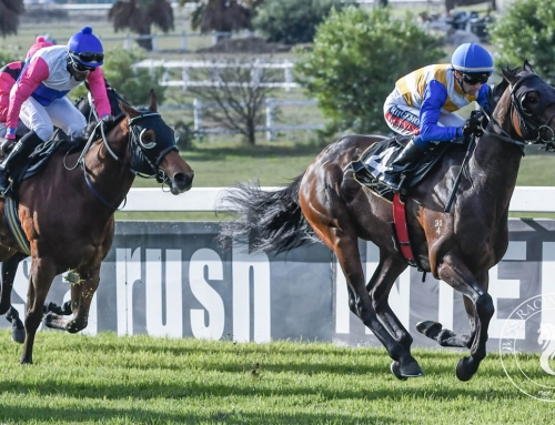 RUNNER COMMENTS FOR DURBANVILLE, SATURDAY 21 SEP