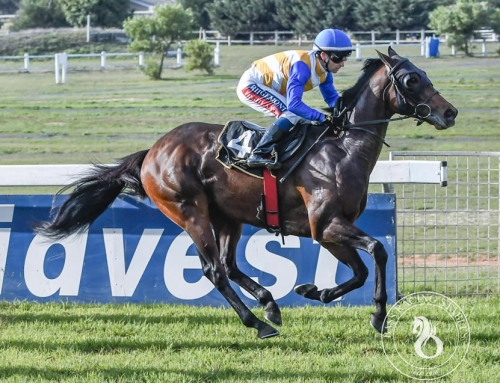 DURBANVILLE RACE COMMENTS, SATURDAY 7 SEPTEMBER