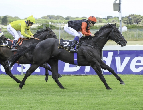 Race Comments Durbanville 20 April
