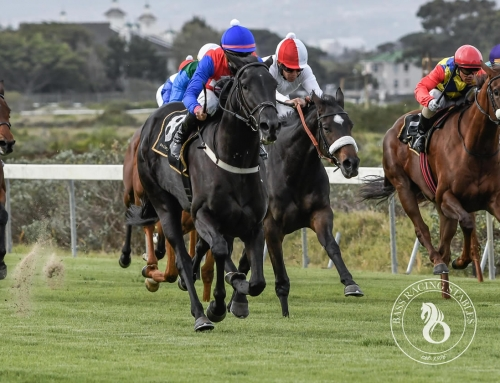 KENILWORTH RACE COMMENTS – SATURDAY, 1 AUGUST