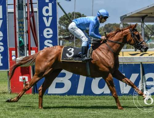 GREYVILLE RACE COMMENTS – SATURDAY, 1 JUNE