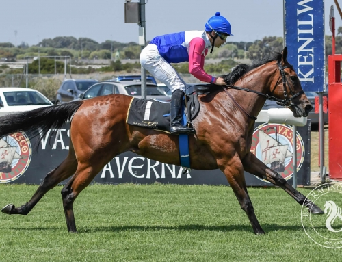 DURBANVILLE RACE COMMENTS – SATURDAY, 18 SEPTEMBER