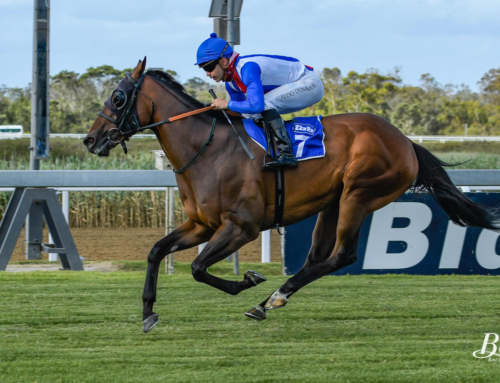 RACING COMMENTS FOR KENILWORTH, SATURDAY 16 JAN