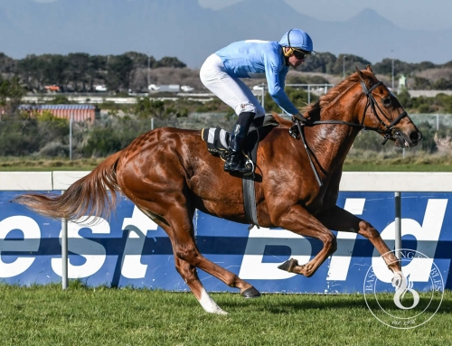 FAIRVIEW RUNNER IN LISTED GUINEAS – 6 MARCH
