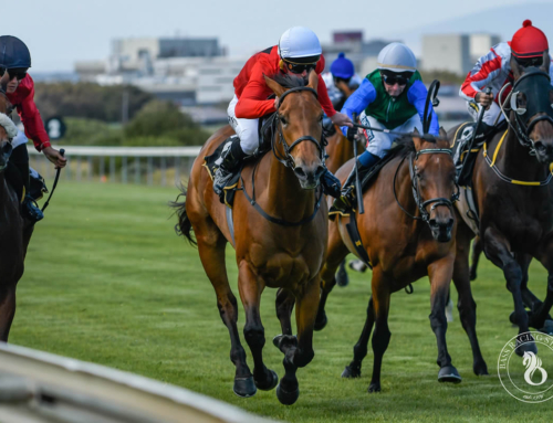 KENILWORTH RACE COMMENTS – SATURDAY, 12 DECEMBER