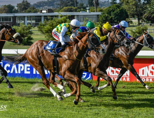 RACE COMMENTS – TURFFONTEIN, GREYVILLE & KENILWORTH