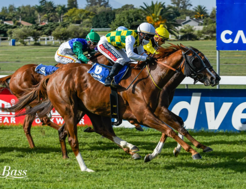 DURBANVILLE RUNNER COMMENTS – WEDNESDAY, 12 MAY