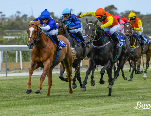 KENILWORTH RUNNER COMMENTS – SATURDAY, 6 FEBRUARY