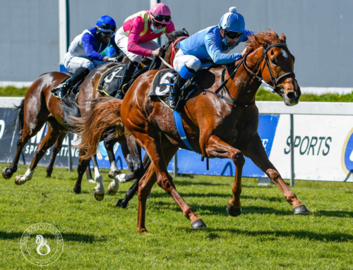 LQP KENILWORTH RACE DAY COMMENTS – FRIDAY, 8 JANUARY