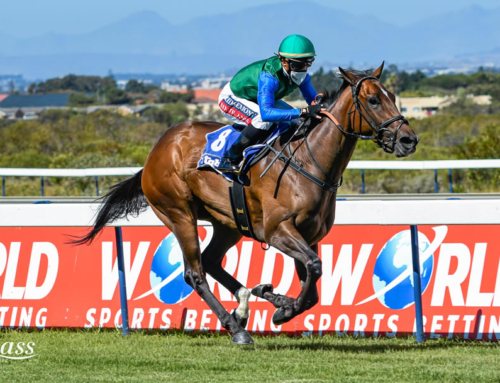 KENILWORTH & GREYVILLE WEEKEND RACE COMMENTS