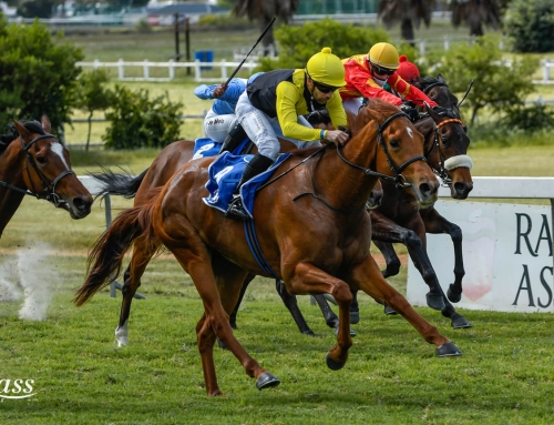 TUESDAY RACE COMMENTS – DURBANVILLE, 20 OCTOBER