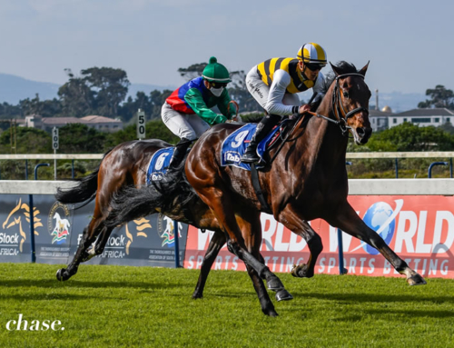 KENILWORTH RUNNER COMMENTS – WEDNESDAY, 7 JULY