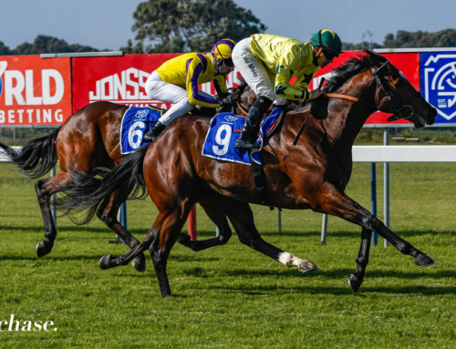 FAIRVIEW RUNNER COMMENTS – FRIDAY, 9 JULY